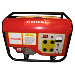 Gasoline Generator (NB3000-1)