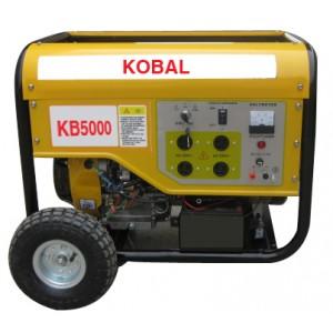 Gasoline Generator (NB2600DXE-2)